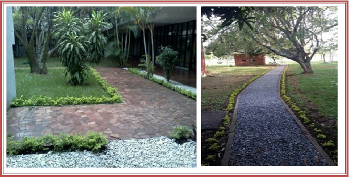 Jardín Univalle Estéreo y Canal Universitario