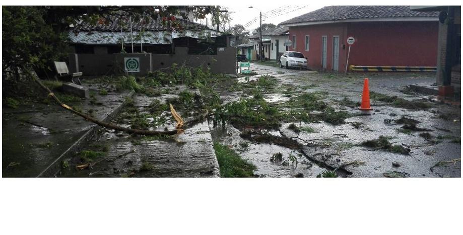 Catorce municipios sufrieron afectaciones por lluvias, vendavales